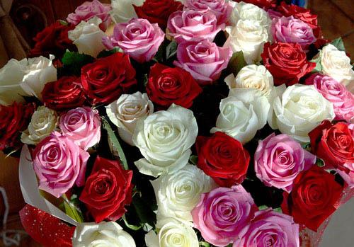 Доставка цветов по Москве  Заказ цветов дешево доставка