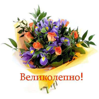 http://vseprosto.com/cms_content/uploads/vseprosto_com/img-blog/velikolepno.jpg