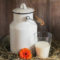 Коровье молоко и рост детей